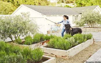 4 Tips for Beautiful Grass and Garden Landscaping