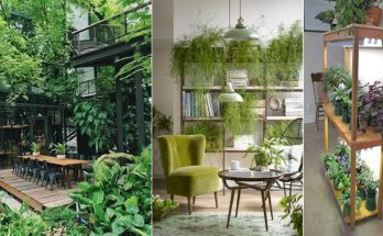 3 Concepts for Decorating Your Office With Flowers and Indoor Plants