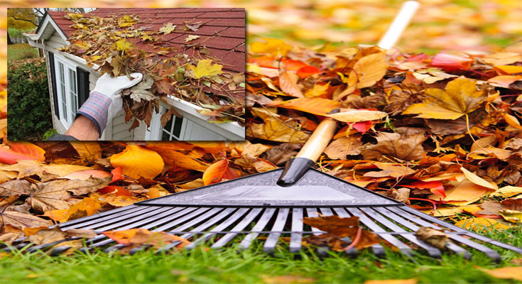 Autumn Home Maintenance Tips